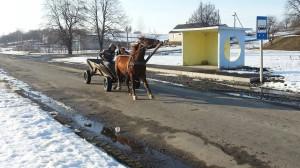Häst och vagn är fortfarande ett vanligt transportmedel på Ukrainas landsbygd